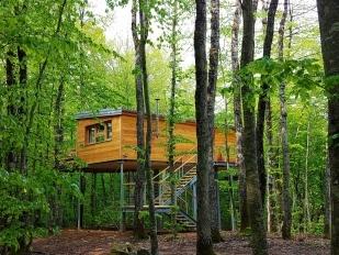 location 2 Cabanes dans les bois