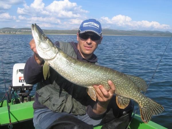 P che sur le lac vransko jezero p che en croatie for Big sur fishing